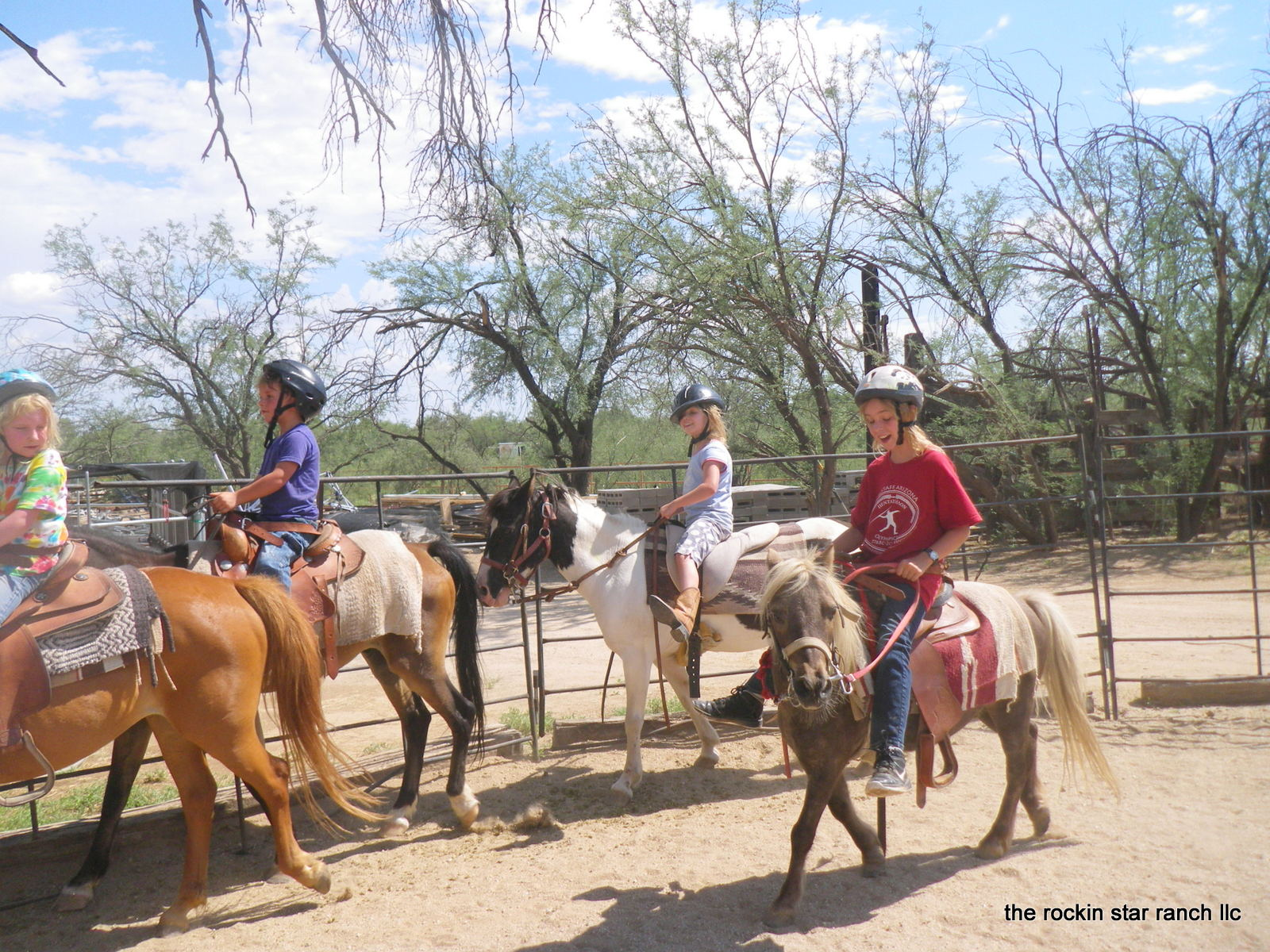 Horse Camp for kids horse rides horse lessons hose camp ...