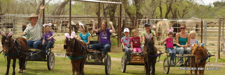 The Rockin Star Ranch LLCBirthday Party Pony ride Petting Zoo